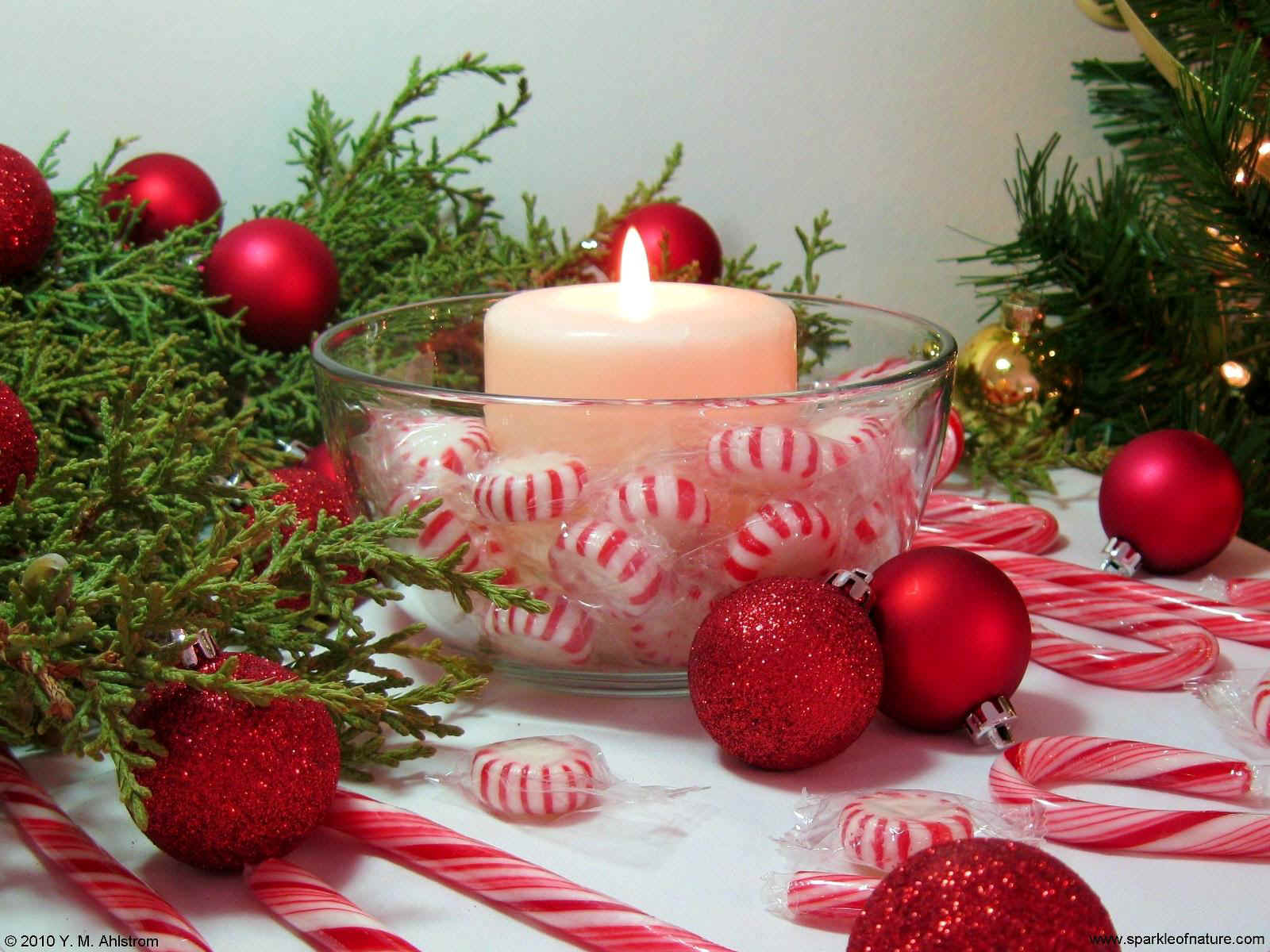 10461 peppermint candle 1600x1200.jpg (284365 bytes)