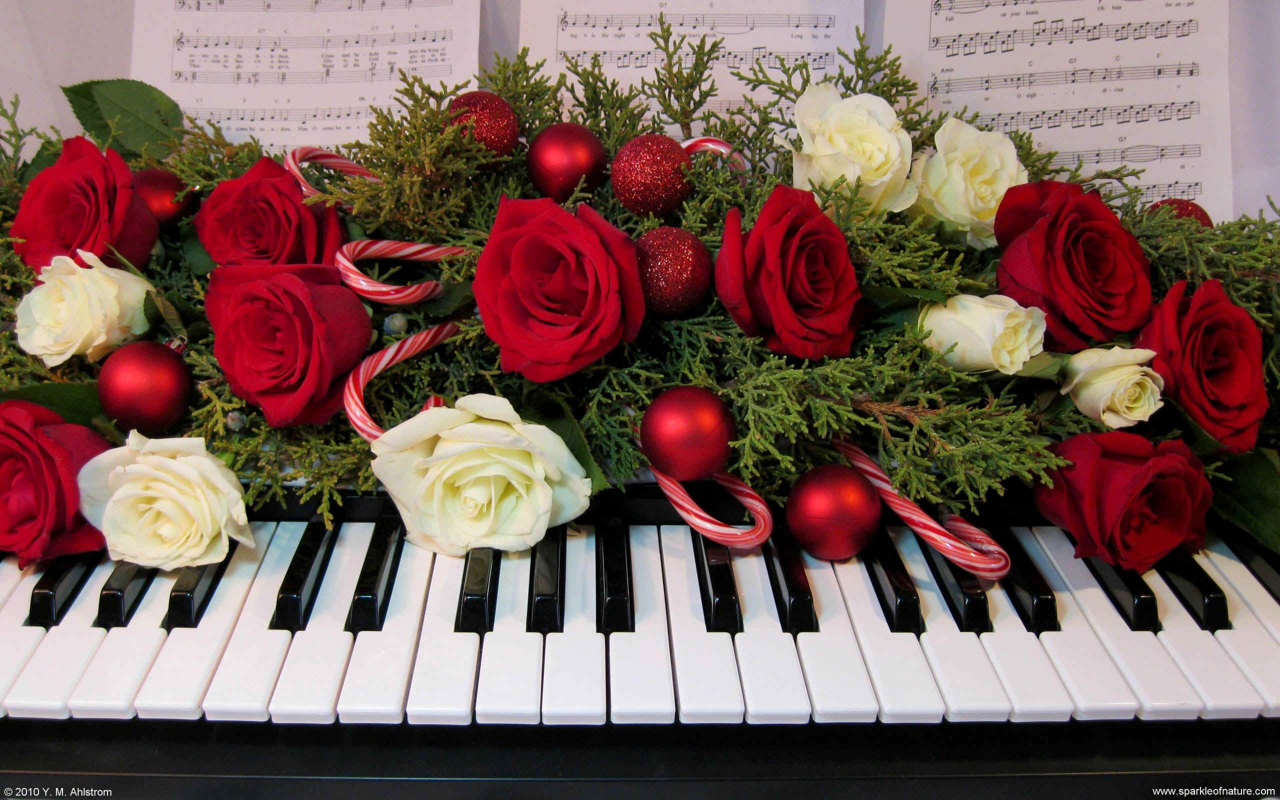 16015 christmas keyboard w 2560x1600.jpg (495161 bytes)