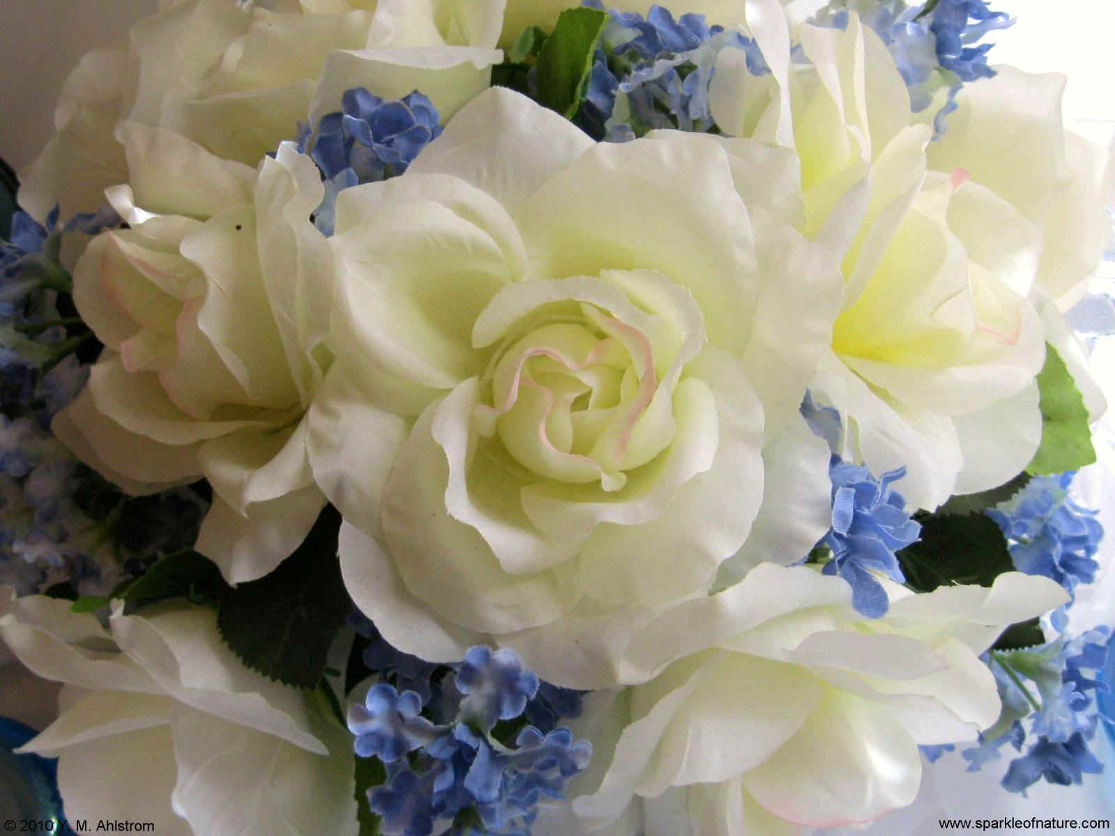 1662 white and blue bouquet 1600x1200.jpg (172823 bytes)