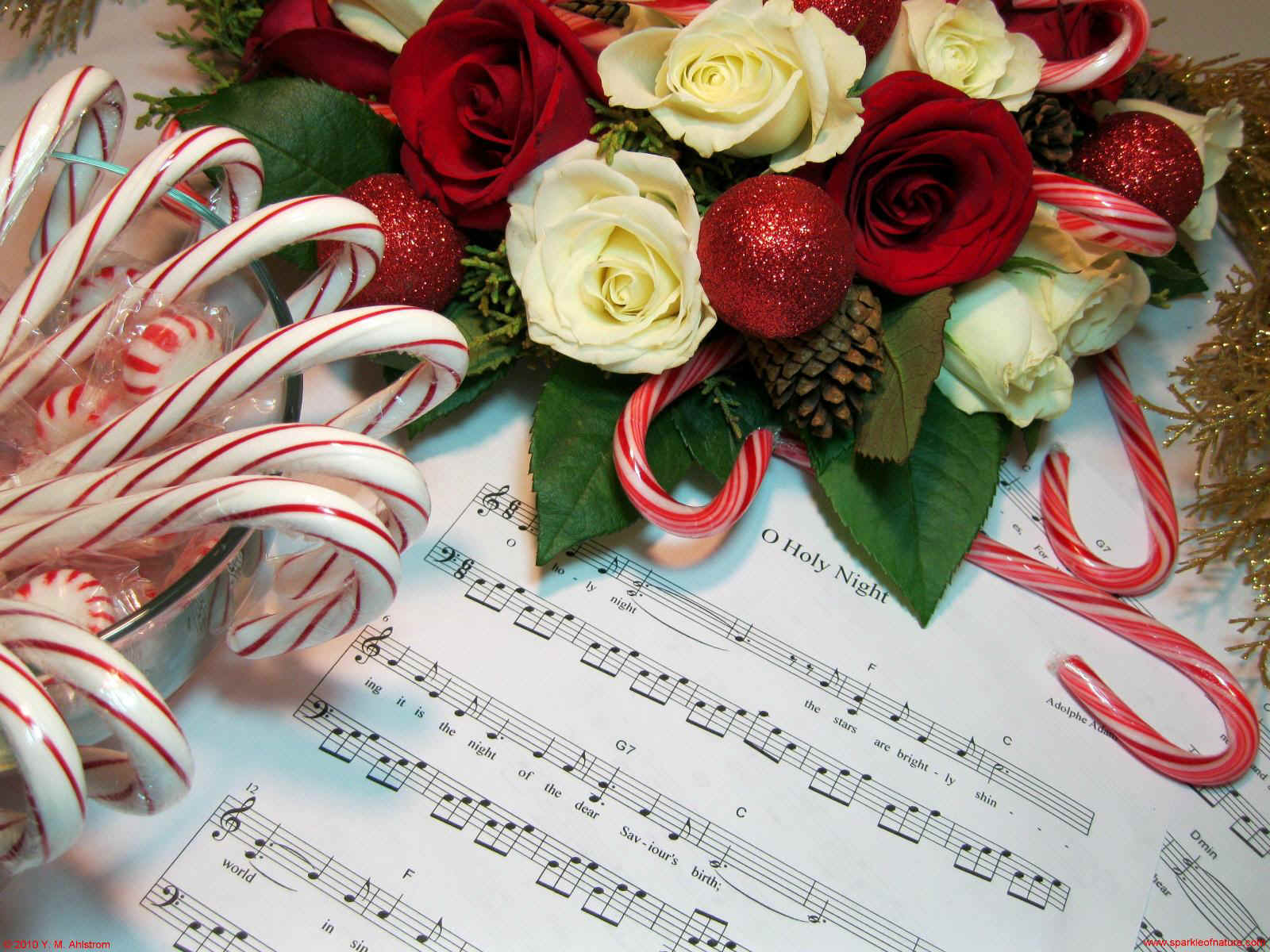17046 christmas music 1600x1200.jpg (319960 bytes)